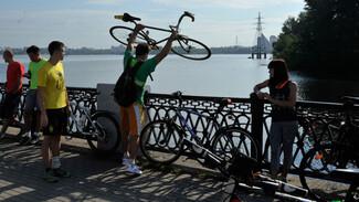 Воронежские активисты попросили власти создать программу развития велоинфраструктуры