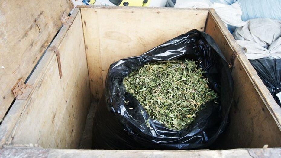 В Аннинском районе полицейские изъяли у местного жителя марихуану