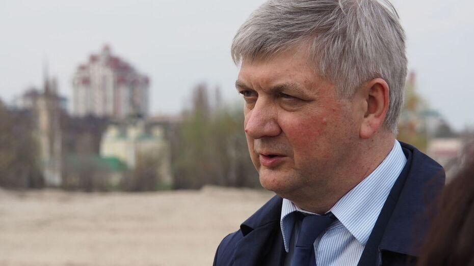 На территории Петровской набережной в Воронеже не будет жилых высоток