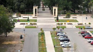 Парковку у Центрального парка в Воронеже закроют на 3 дня из-за фестиваля «Город-сад»