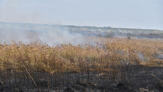 Сильный порывистый ветер придет в Воронежскую область