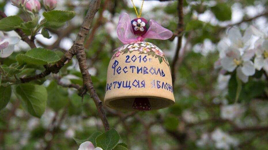 На фестиваль «Цветущая яблоня» в Воронежской области приехал питерский певец