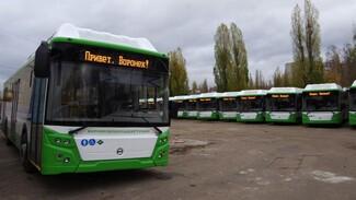 Приехали! Воронеж получил 62 низкопольных автобуса по федеральной программе