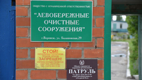 Ущерб государству от воронежских ЛОС составил около 1 млрд рублей