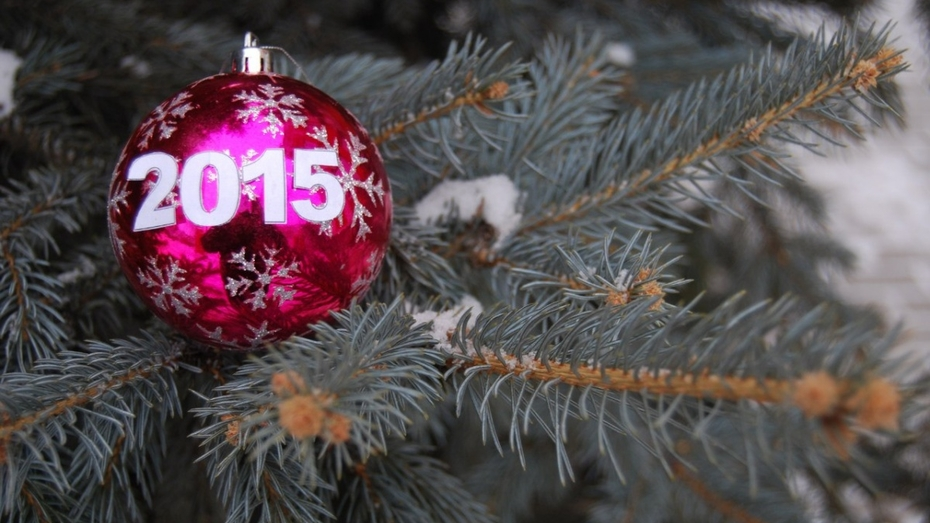 Снежная буря в Воронеже закончится в ночь на 31 декабря