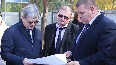 Мэр Воронежа предложил перенести строительство катка из парка «Танаис»