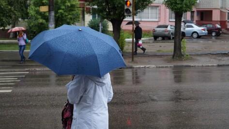 Дождливая погода сохранится в Воронеже на выходных