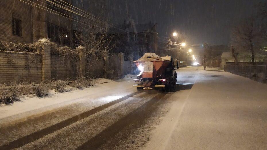Гидрометцентр: выпавший за ночь в Воронеже снег растает к вечеру