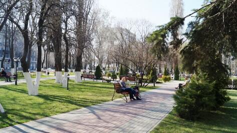 Холода в Воронежской области отступили