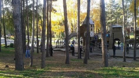 Воронежские чиновники запланировали создание детского эколагеря в парке «Алые паруса»