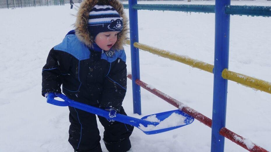 Завтра в Воронеже похолодает и выпадет много снега