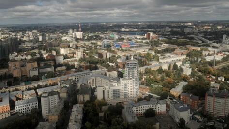 И.о. вице-мэра Воронежа: «Наше колесо обозрения станет самым высоким в России»