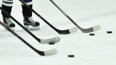 Хоккейная «Россошь» дважды обыграла «Брянск»