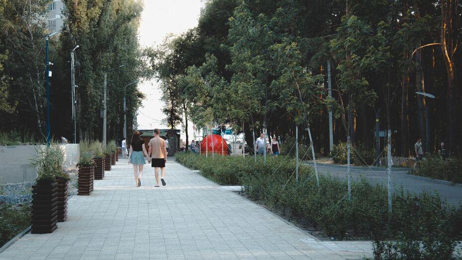 Маяк и новые скамейки. Как в Воронеже идет реконструкция парка «Дельфин»