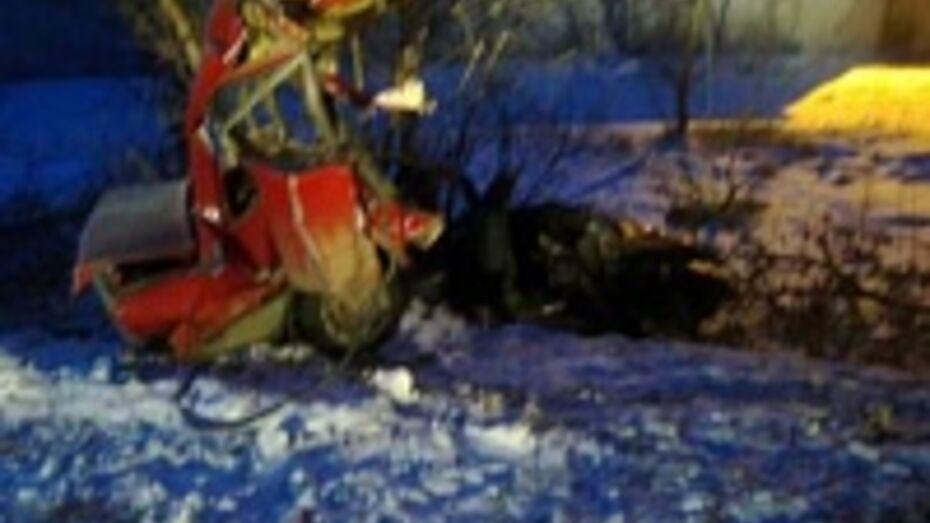 В Таловском районе «ВАЗ» врезался в дерево: два человека ранены