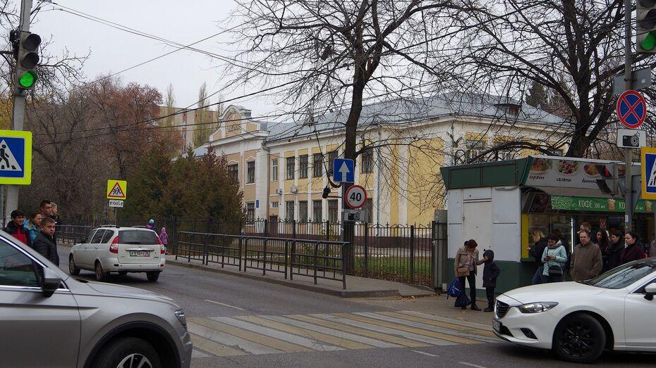 Воронежское областное родительское собрание посвятят безопасности детей на дорогах