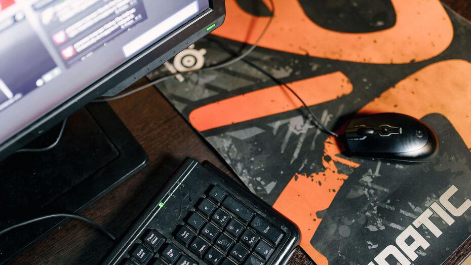 В Воронежской области хакер заплатит 10 тыс рублей за атаки на сайты органов госвласти
