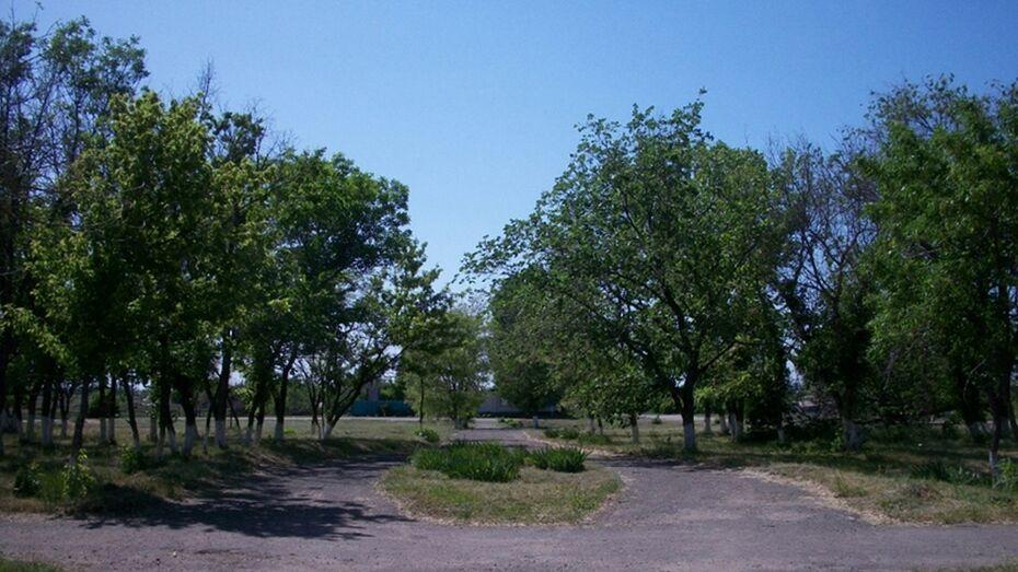 В поворинском селе Рождественское обустроят парк
