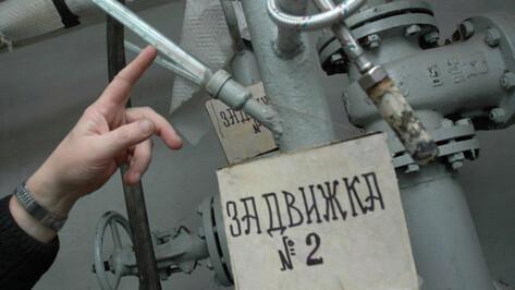 «Квадра» подала заявку на концессию «Воронежтеплосети»