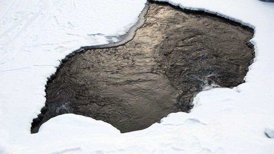 Лискинские спасатели вытащили провалившегося под лед рыбака