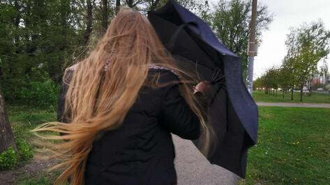 Воронежцев предупредили о порывах ветра до 20 м/сек
