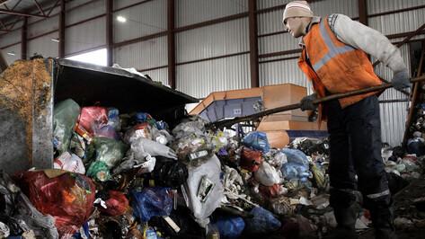 Раздельный сбор мусора в Воронежской области начнут внедрять в 2020 году
