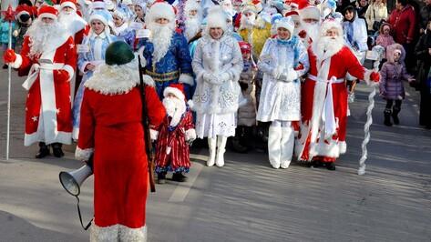 Гид РИА «Воронеж»: куда сходить на выходных 24 и 25 декабря