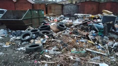 Воронежцы пожаловались на свалку возле детского сада