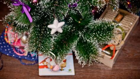 Воронежцам предложили передать подарки к Новому году для детей-сирот