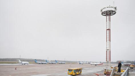 Воронежский аэропорт проверит на китайский коронавирус всех прилетевших из-за рубежа
