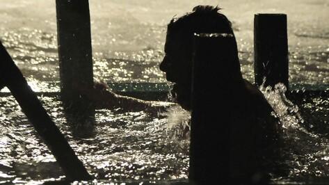 Опрос РИА «Воронеж»: Стоит ли купаться в ночь на Крещение?