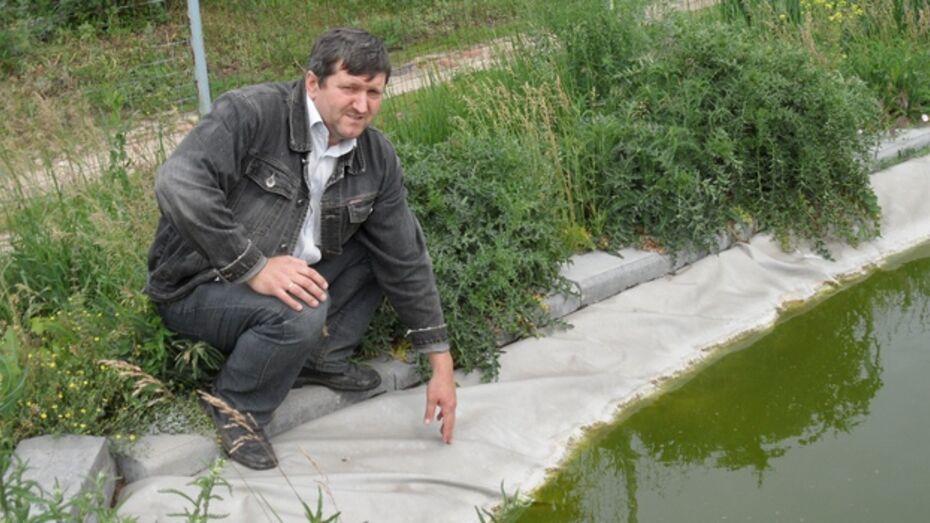 В Рамонском районе бывший военный авиационный инженер разводит экзотических рыб