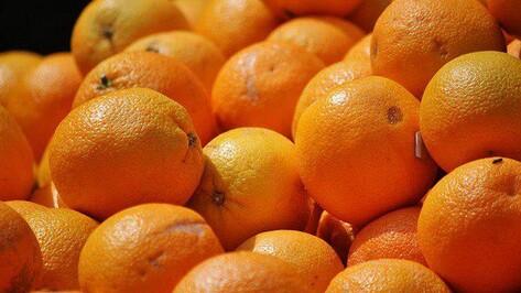 В Воронежской области задержали фуру турецких апельсинов