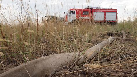 Чрезвычайная пожароопасность сохранилась в половине районов Воронежской области