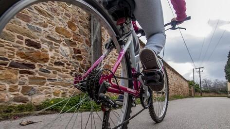 Россошанские полицейские ищут сбившего велосипедистку водителя