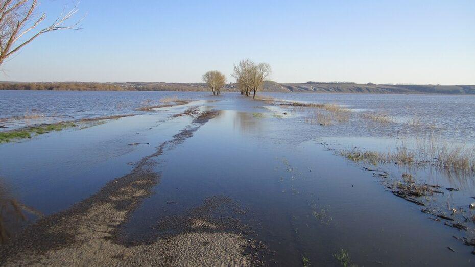 В россошанских водоемах уровень воды в половодье будет вдвое ниже критического