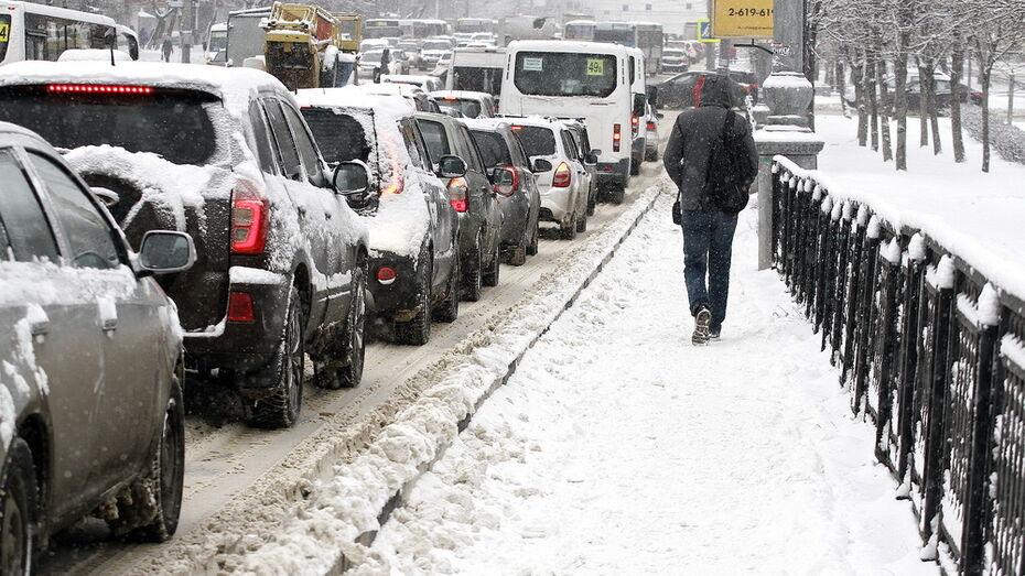 Снег и легкое похолодание в выходные обещали синоптики в Воронеже