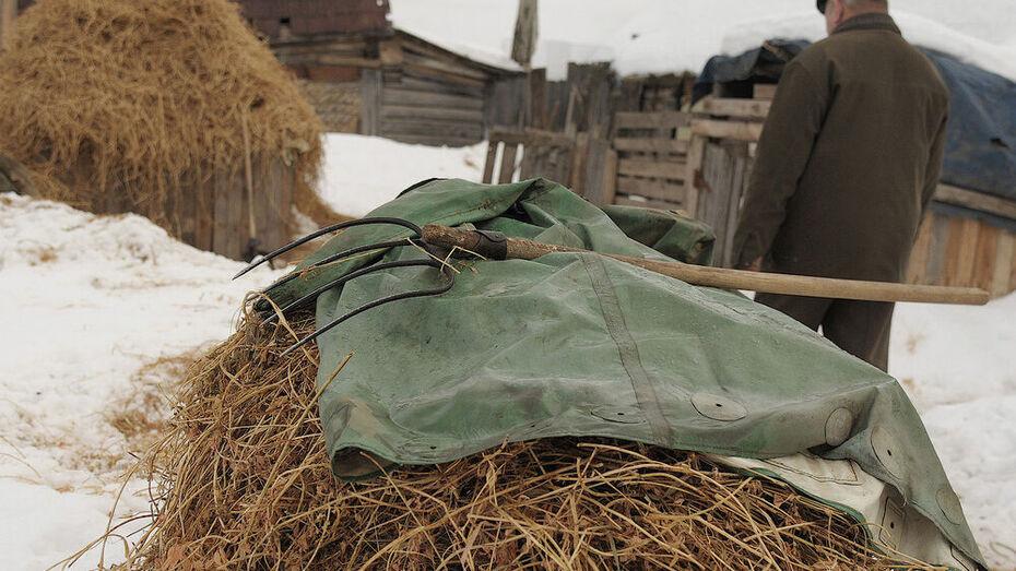 В Воронежской области пенсионер из-за неразделенной любви спалил сеновал
