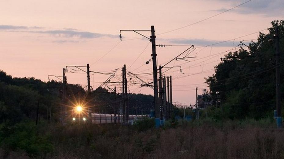 В Воронежской области РЖД проложит железнодорожную ветку в обход Украины