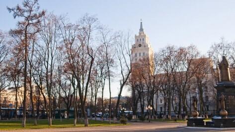 Воронежская область попала в топ-30 самых популярных туристических регионов в 2017 году