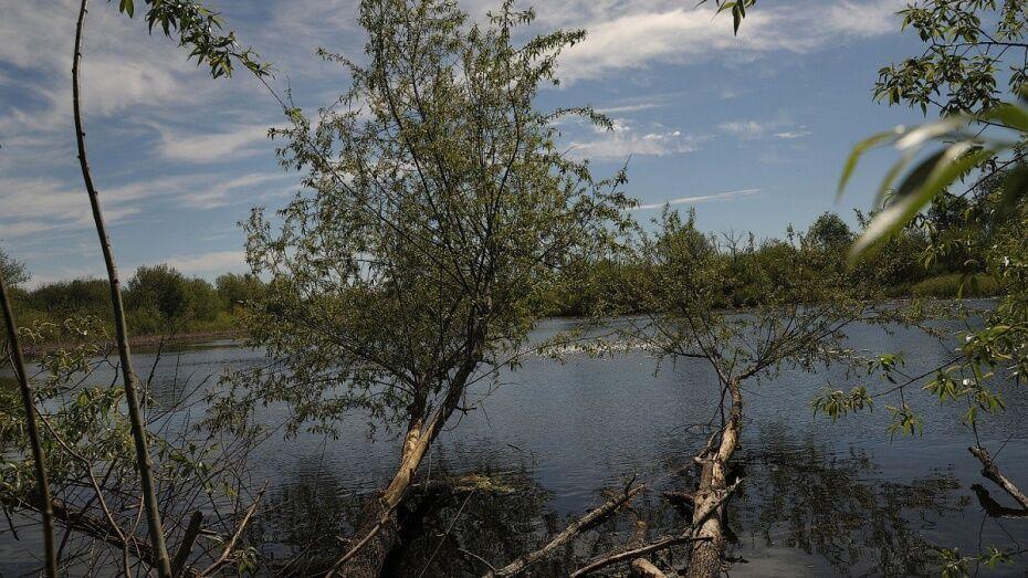 В Воронежской области нашли тело мужчины в пруду Сельхозтехника