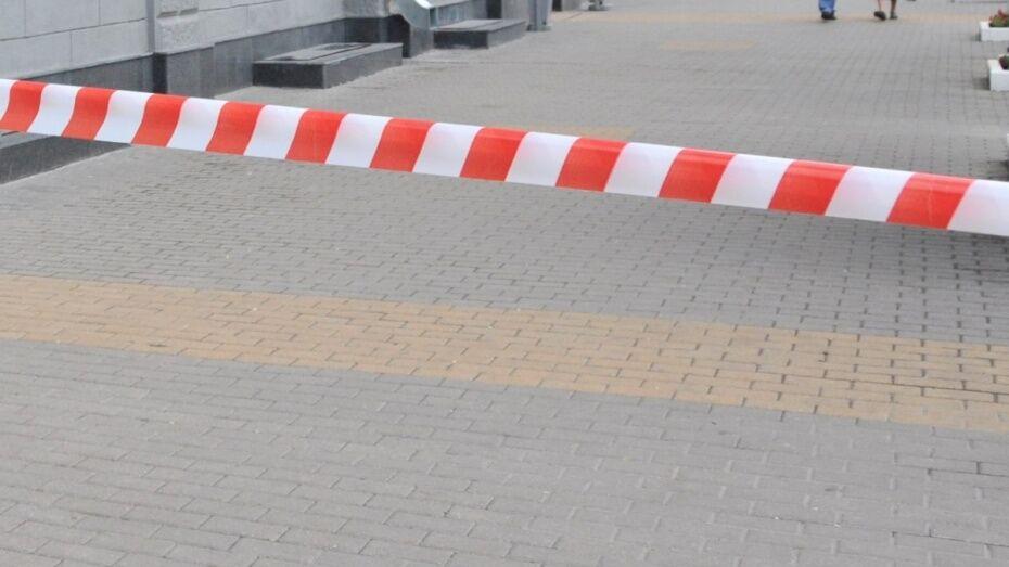 В Воронеже улицу Студенческая оцепили из-за забытой коробки