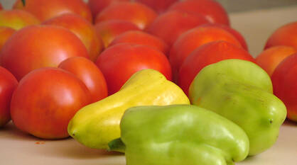 Сельхозтехнику, сыр и тепличные овощи будут производить в Воронежской области