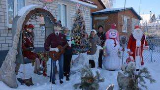 Супруги из каширского села Старина украсили двор самодельными новогодними фигурами