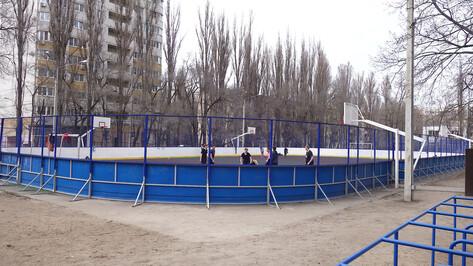 Воронежцев попросили высказаться о пришкольных спортплощадках