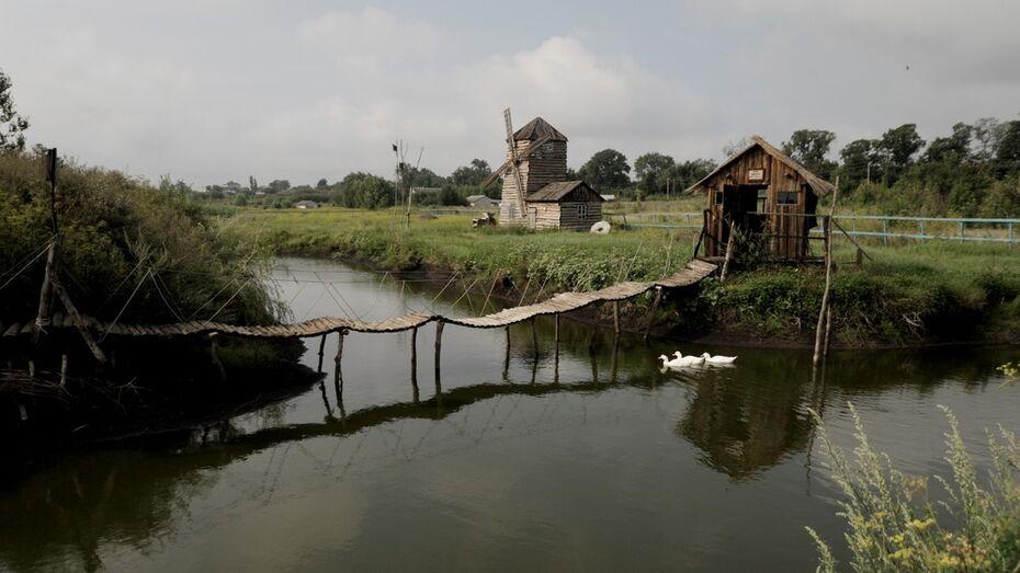 Власти Воронежской области поддержат этнографический музей под открытым небом