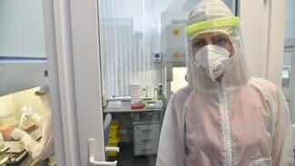 Коронавирусом в Воронежской области заболели еще 226 человек