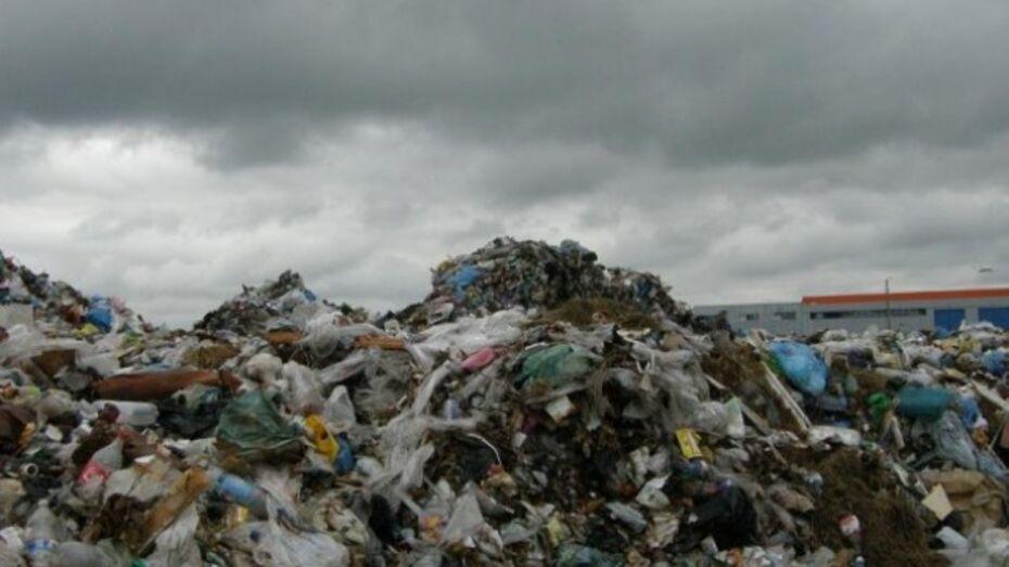 В Подгоренском районе в пятый раз обокрали мусорную свалку