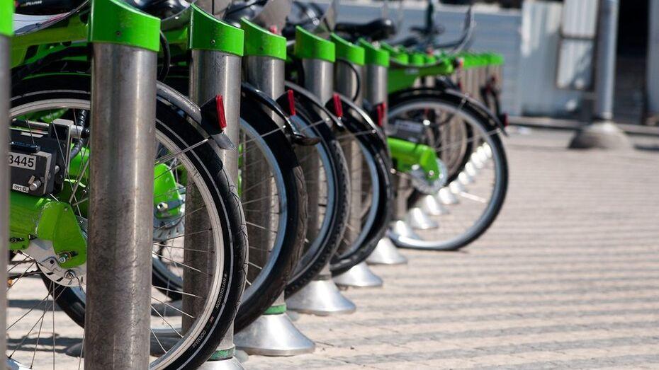 В велопрокате воронежцы смогут взять городские велосипеды, маунтинбайки и даже чопперы