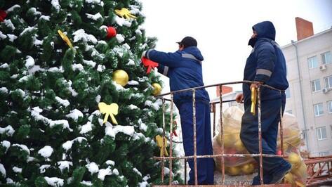 «Пусть народ порадуется». Новогодние приключения елок в Воронежской области